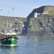 RATHLIN ISLAND SEAGULLS AROUND FISHING BOAT