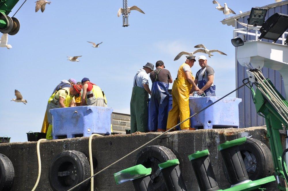 spanish fisherman 1