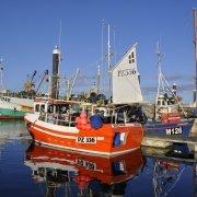 Newlyn Harbour - always busy, always colourful...
