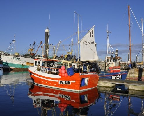 Newlyn Harbour - always busy, always colourful...